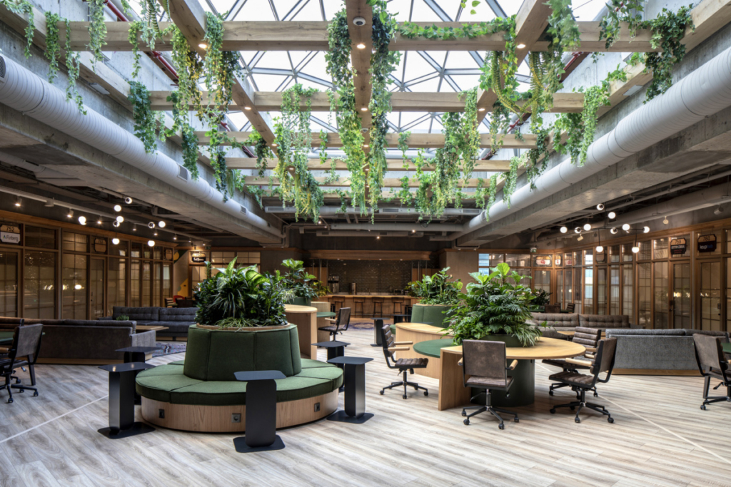 Incorporating a variety of workspaces and natural elements is one way to increase productivity in the workplace