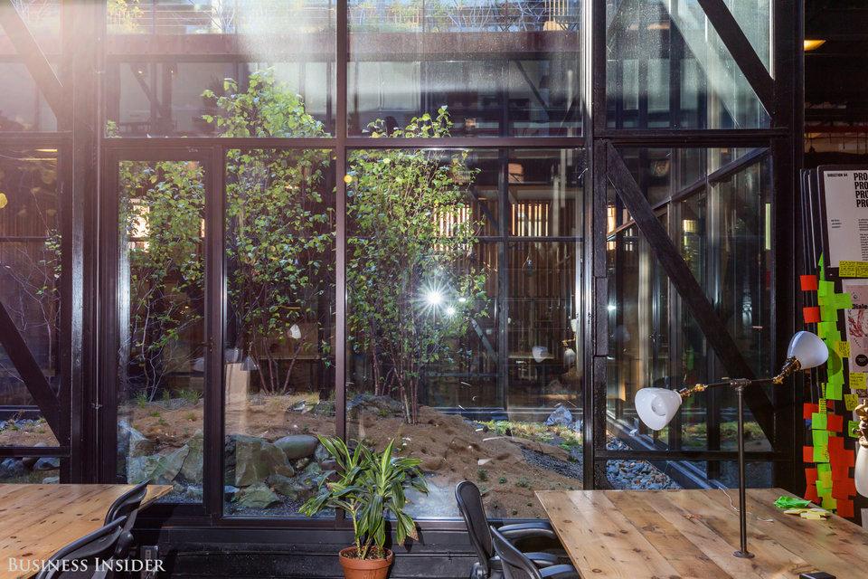 Kickstarter solarium natural light social area