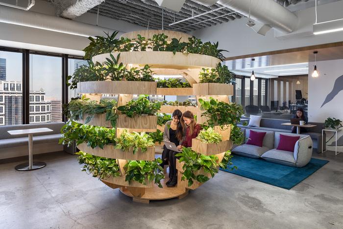 Joany Biophilic Office Design