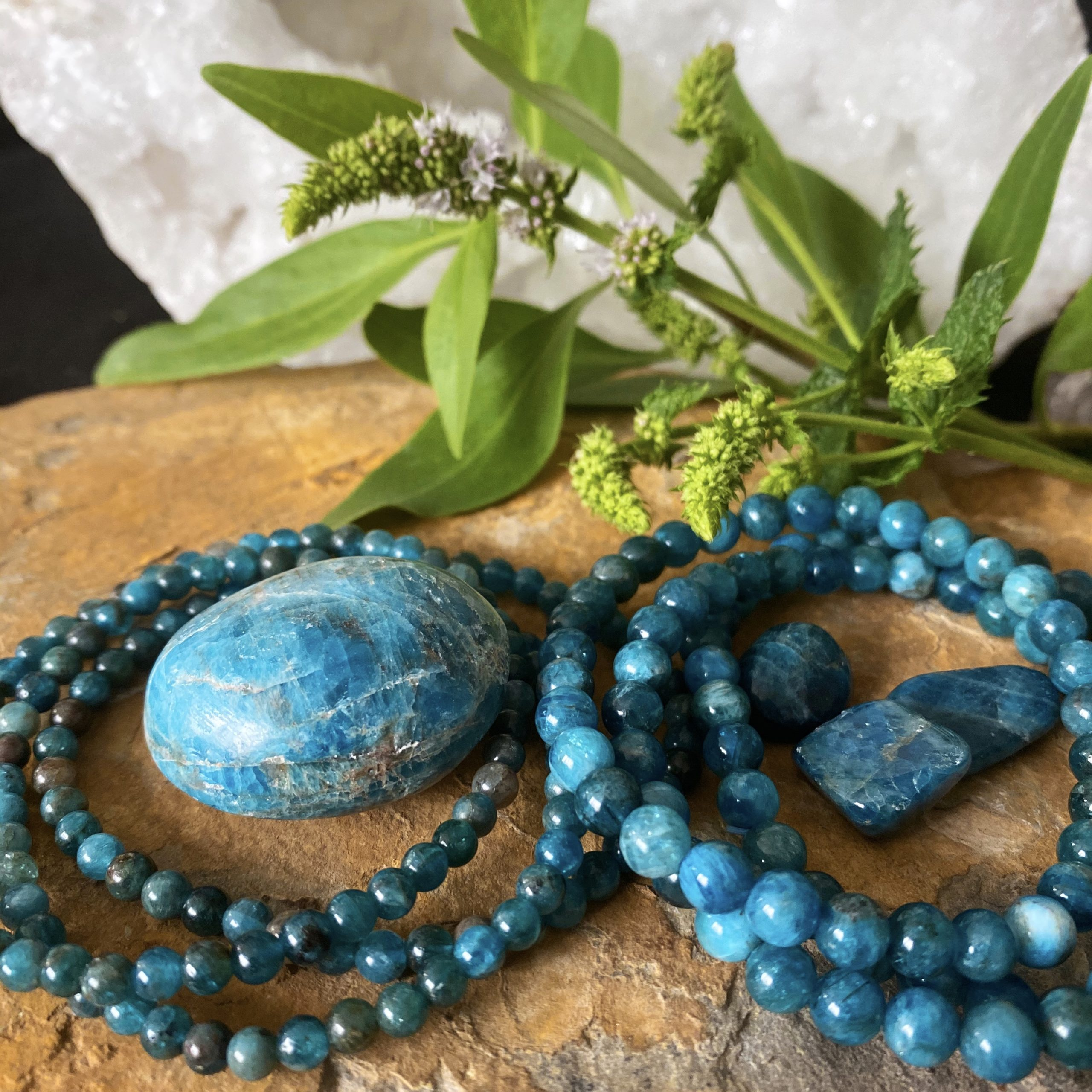 Apatite | Focus and Personal Growth
