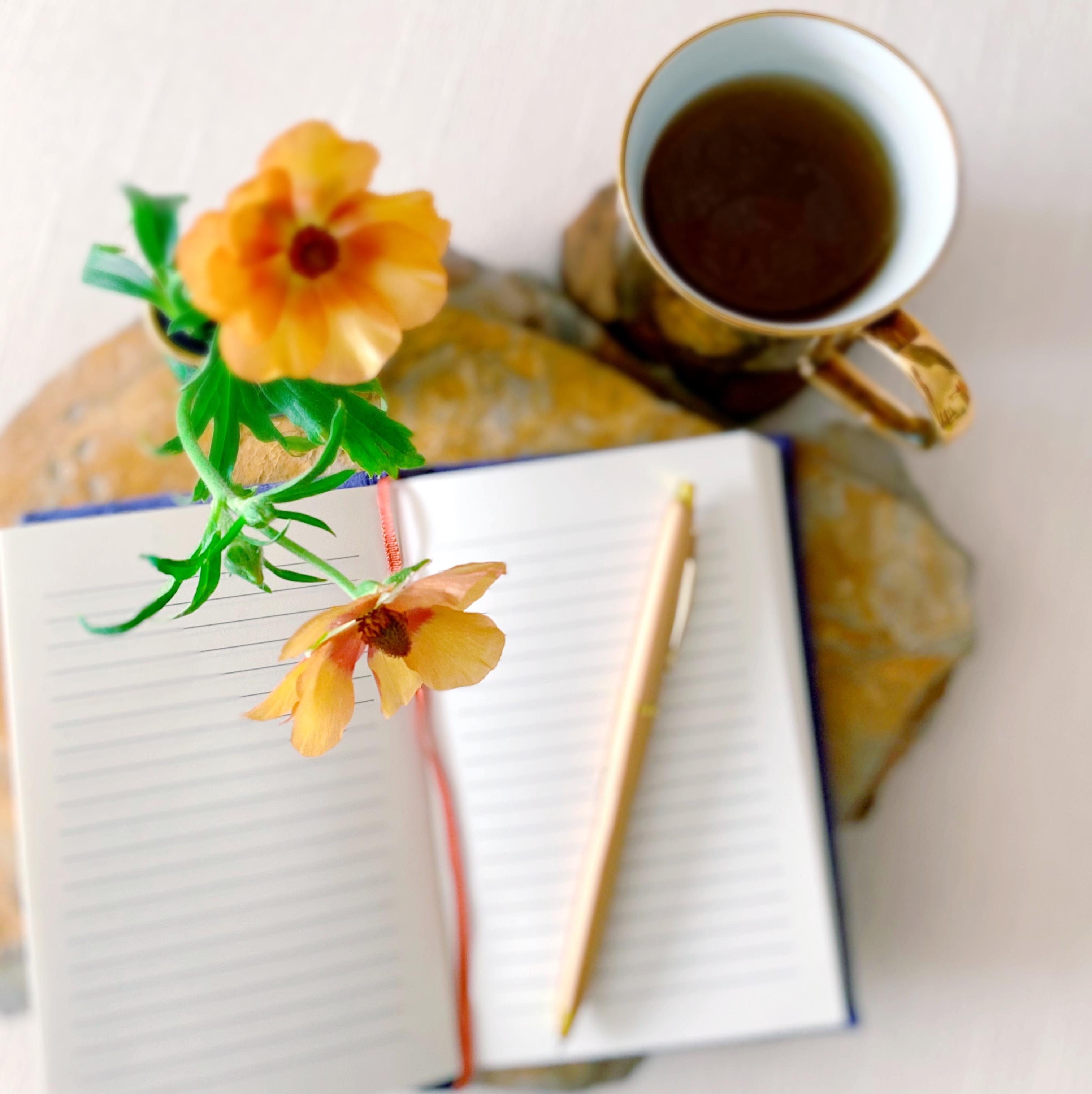 journal bookwork reflection journalling introvert