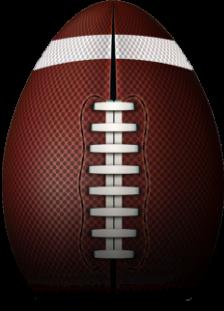 Wolverine Studios Football