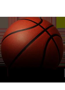 Wolverine Studios Basketball