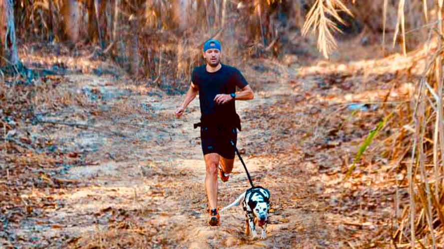 Imagem de homem praticando canicross, corrida na natureza, com seu cachorro dalmata