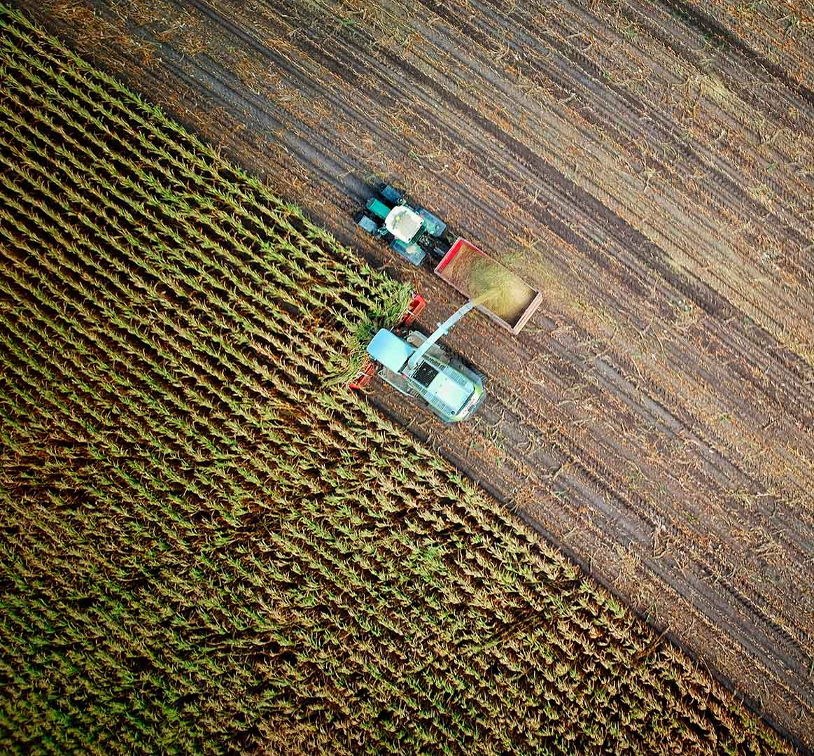 Agriculture Transition   AXA Climate