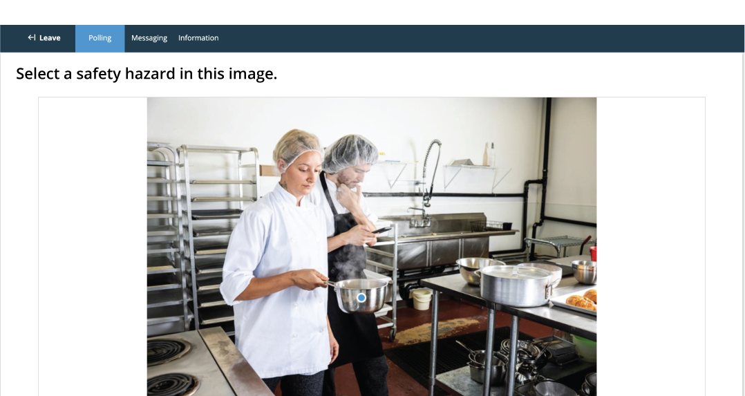 Participant selecting a hotspot image using TurningPoint web.