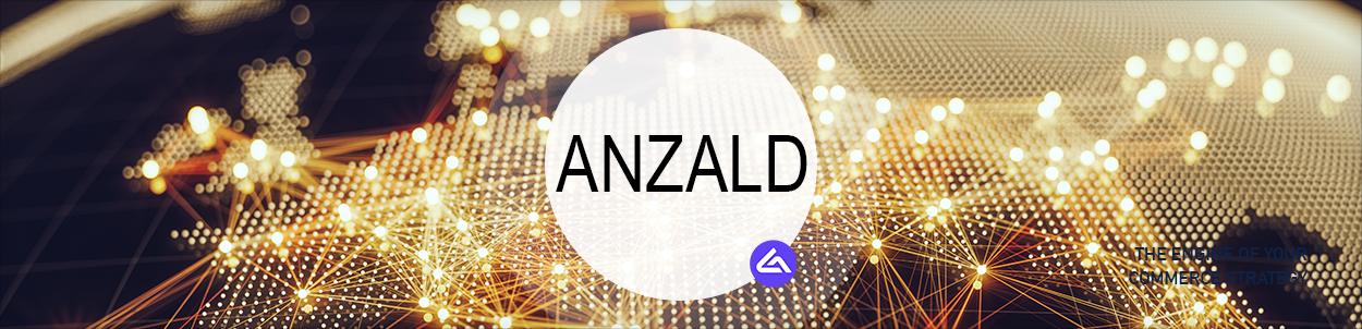 Associate Partner: Anzald