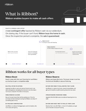 Ribbon Overview