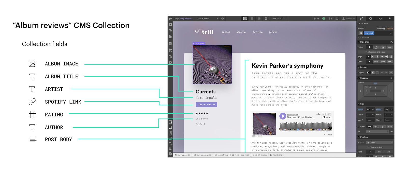 cms collections in Webflow