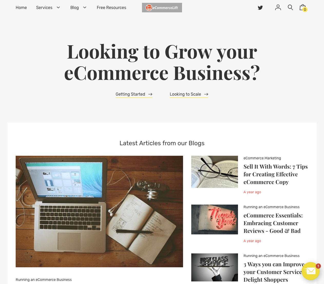 Ecommerce Lift blog landing page.