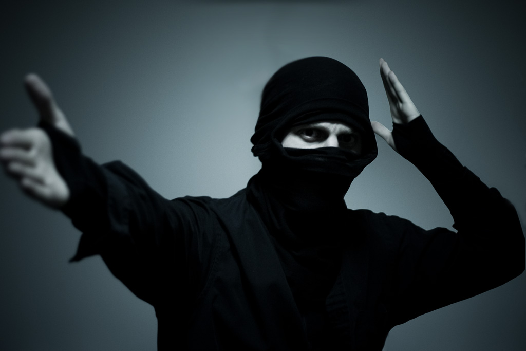 ninja doing ninja moves