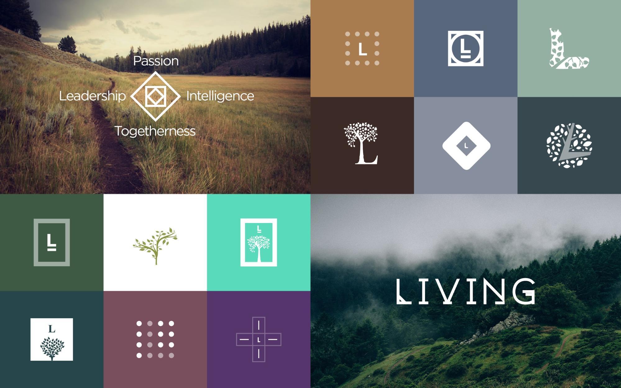 The web design process: creating the visual design | Webflow Blog