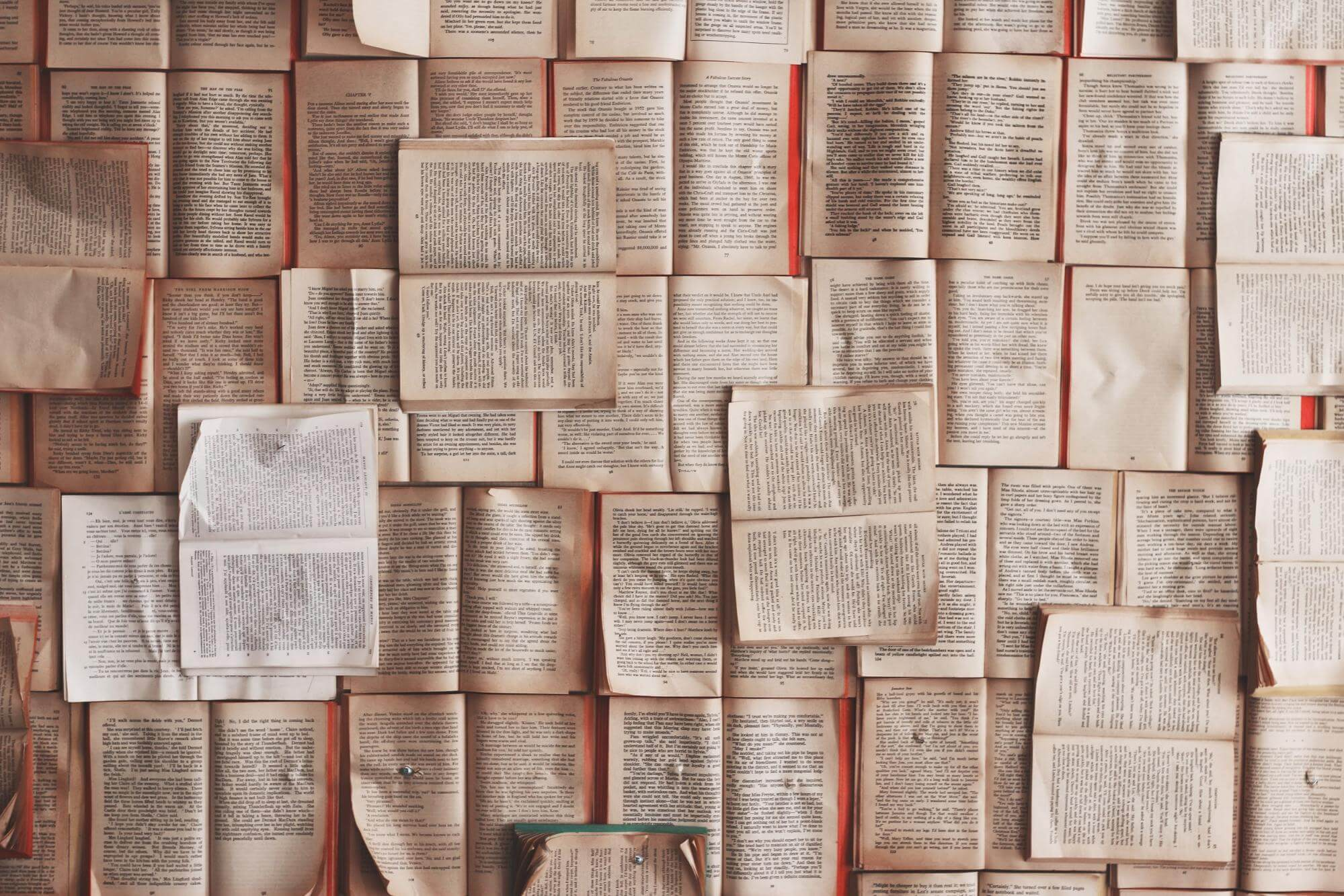Books nailed to a wall