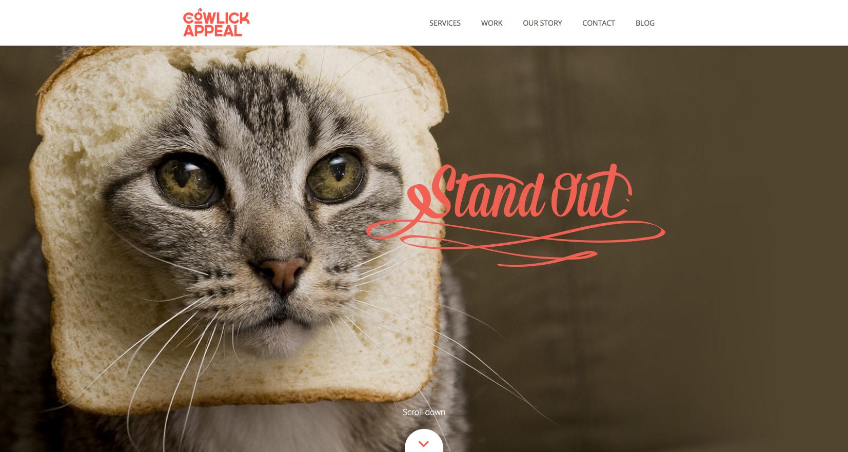 Cowlick Appeal's agency website