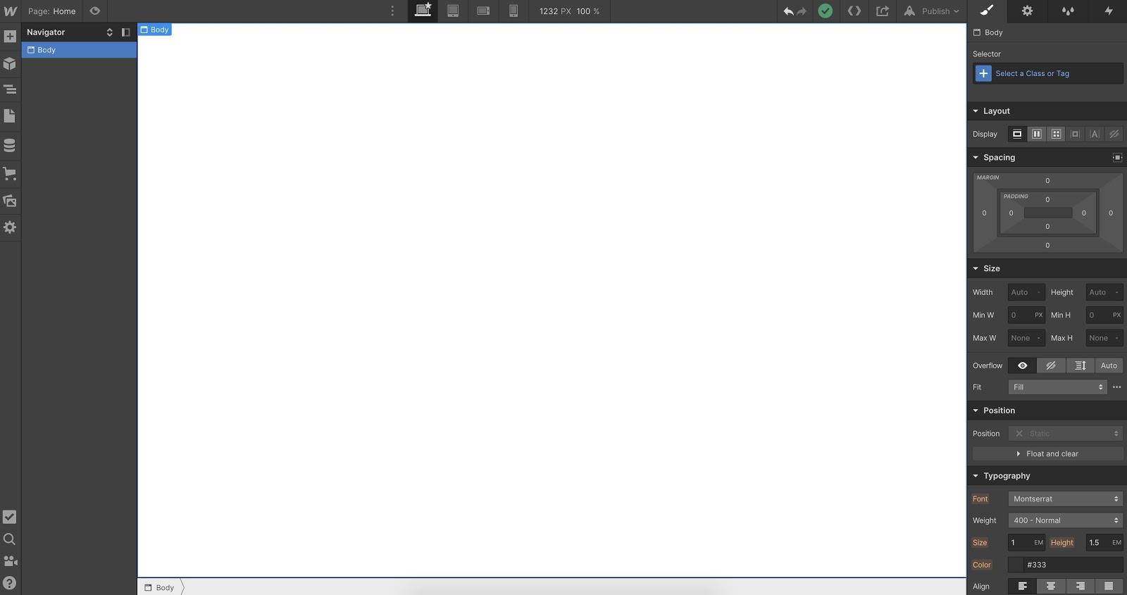 blank project in the Webflow Designer