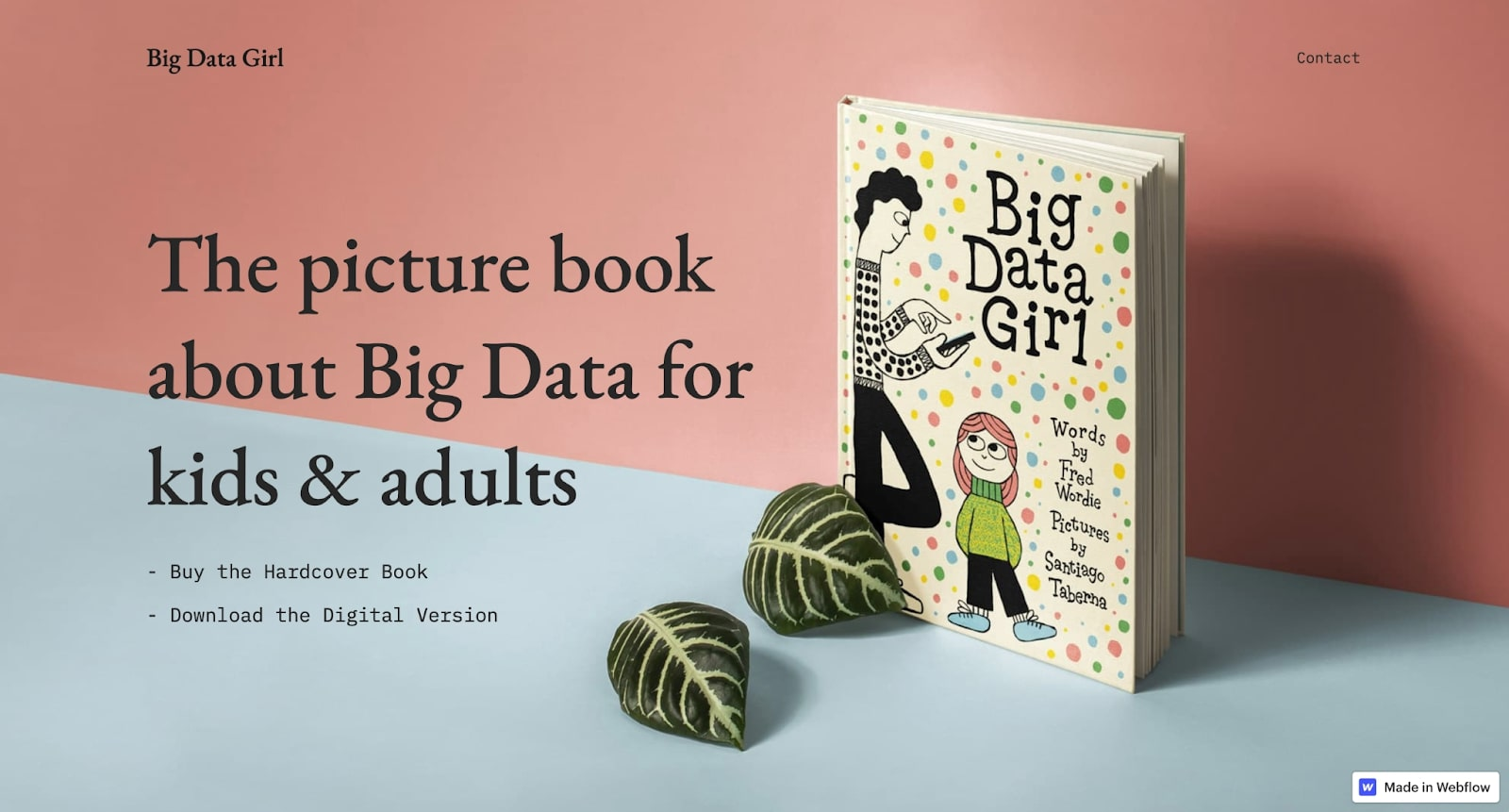 An image of the Big Data Girl website home page.