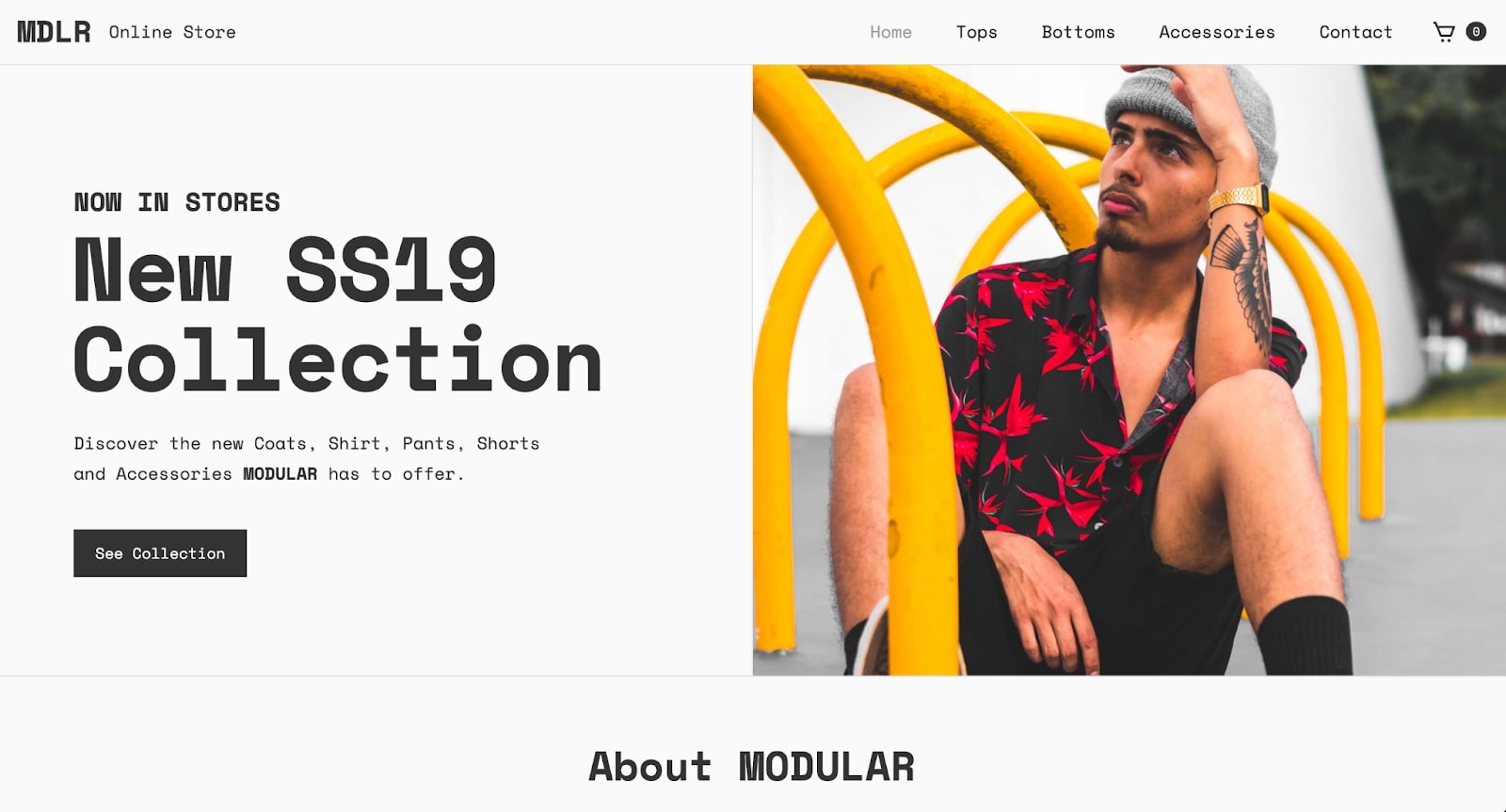 An image of MDLR's online store.