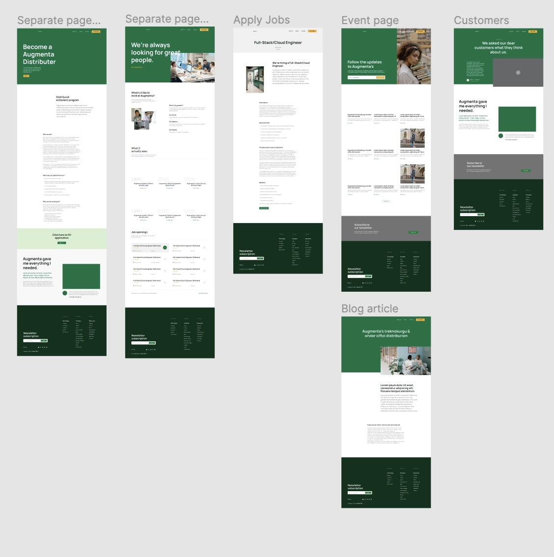 Website template example showing how different landing pages would appear.