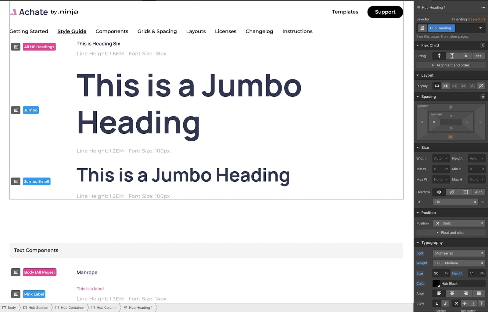Website template showing how different heading sizes will appear.