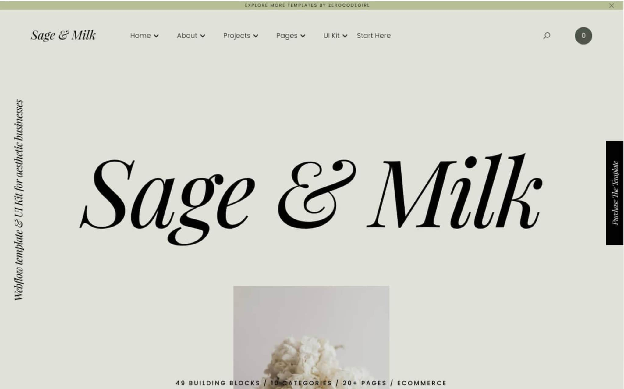 An image of the Sage & Milk template.