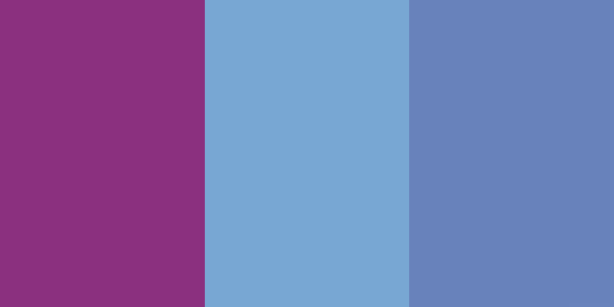 An image of the raspberry and different shades of blue color combinatiion.