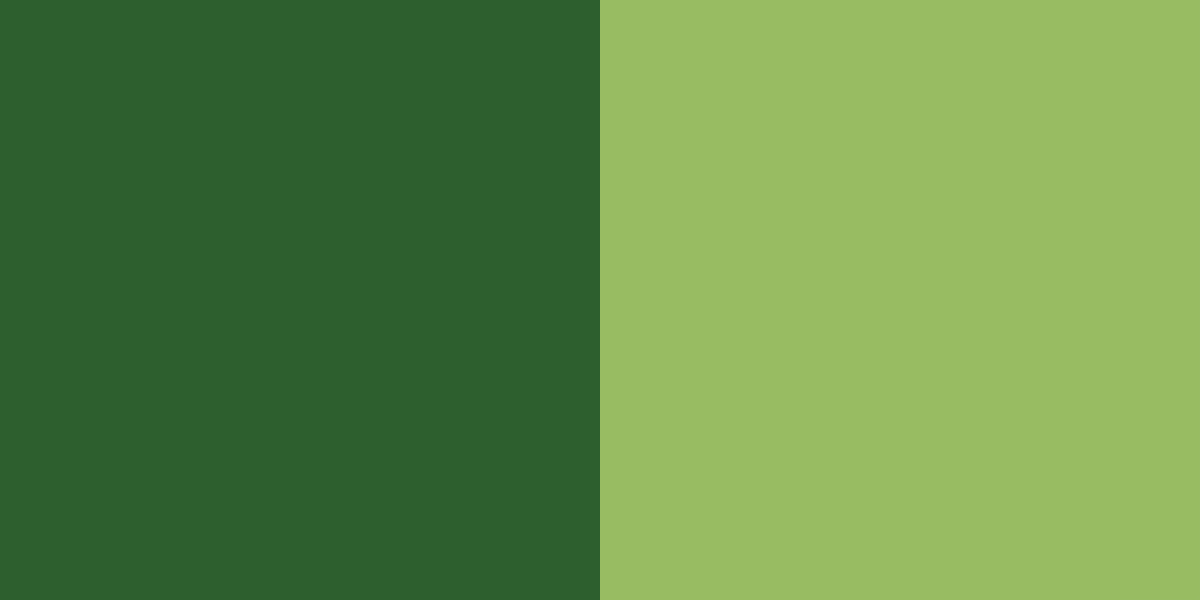 An image of the forest green and moss green color combination.