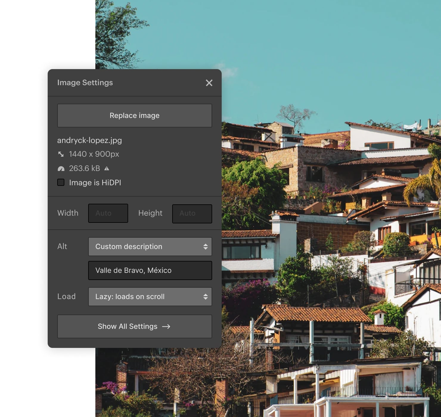 An example of image alt tag editing in Webflow.