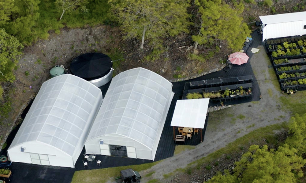 Photo shows an aerial view of two greenhouses next to each other. On one side is the outdoor nursery.