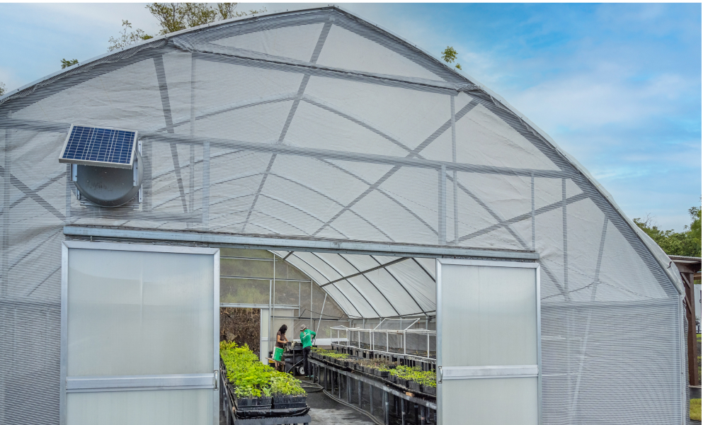 Long tables filled with plants span the length of a plant nursery. The door is open and looks out on the ocean.