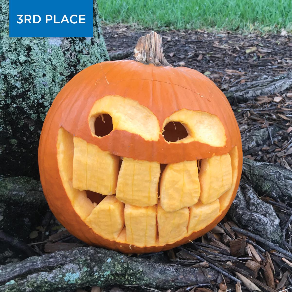 2020 Pumpkin Winner Funny 3