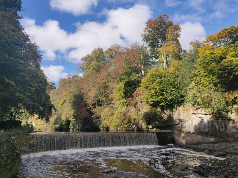 The River Almond running through autumnal trees