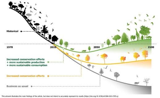 chart-showing-outcomes-biodiversity