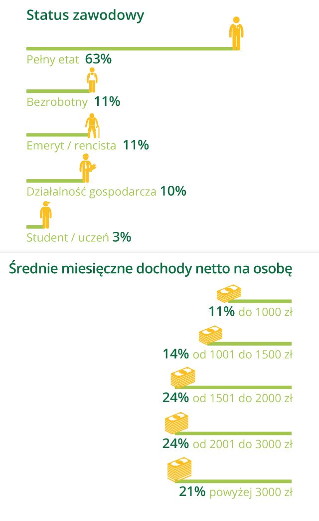 demografia pożyczkobiorców: podział według statusu zawodowego i dochodów