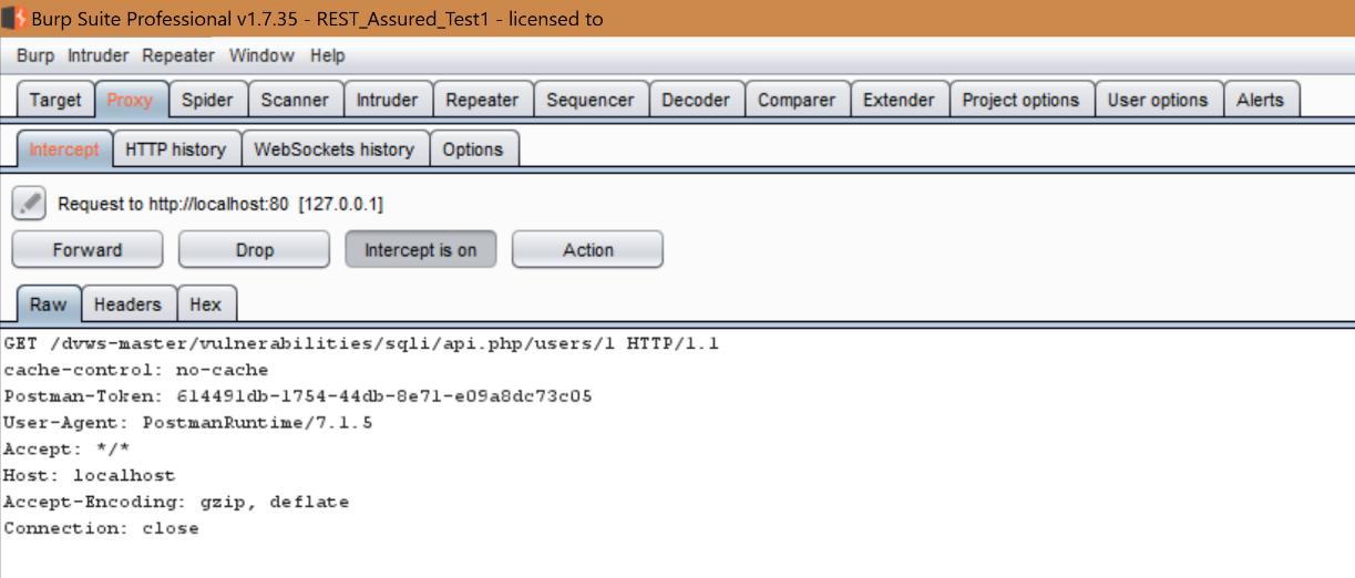 Burp suite API REST