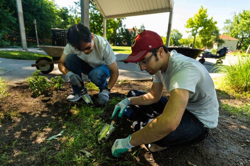 Nexsys team members doing yard work at a community volunteering event