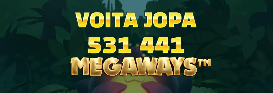 Flower Fortunes Megaways kolikkopeli - 531 441 voittotapaa