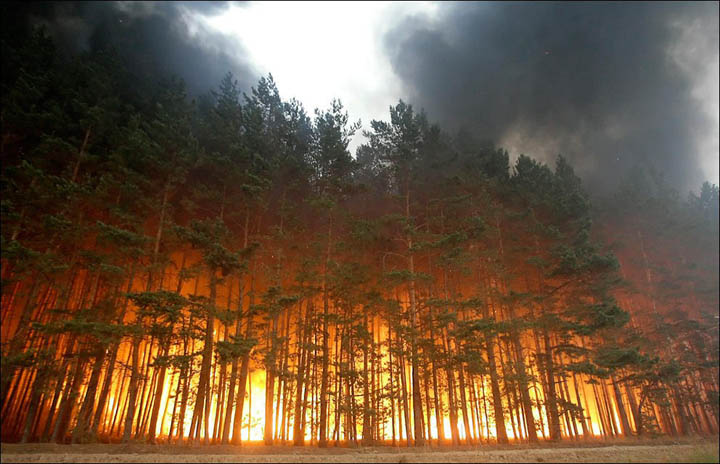 Why are the 'Zombie' fires in Siberia a ticking climate bomb?