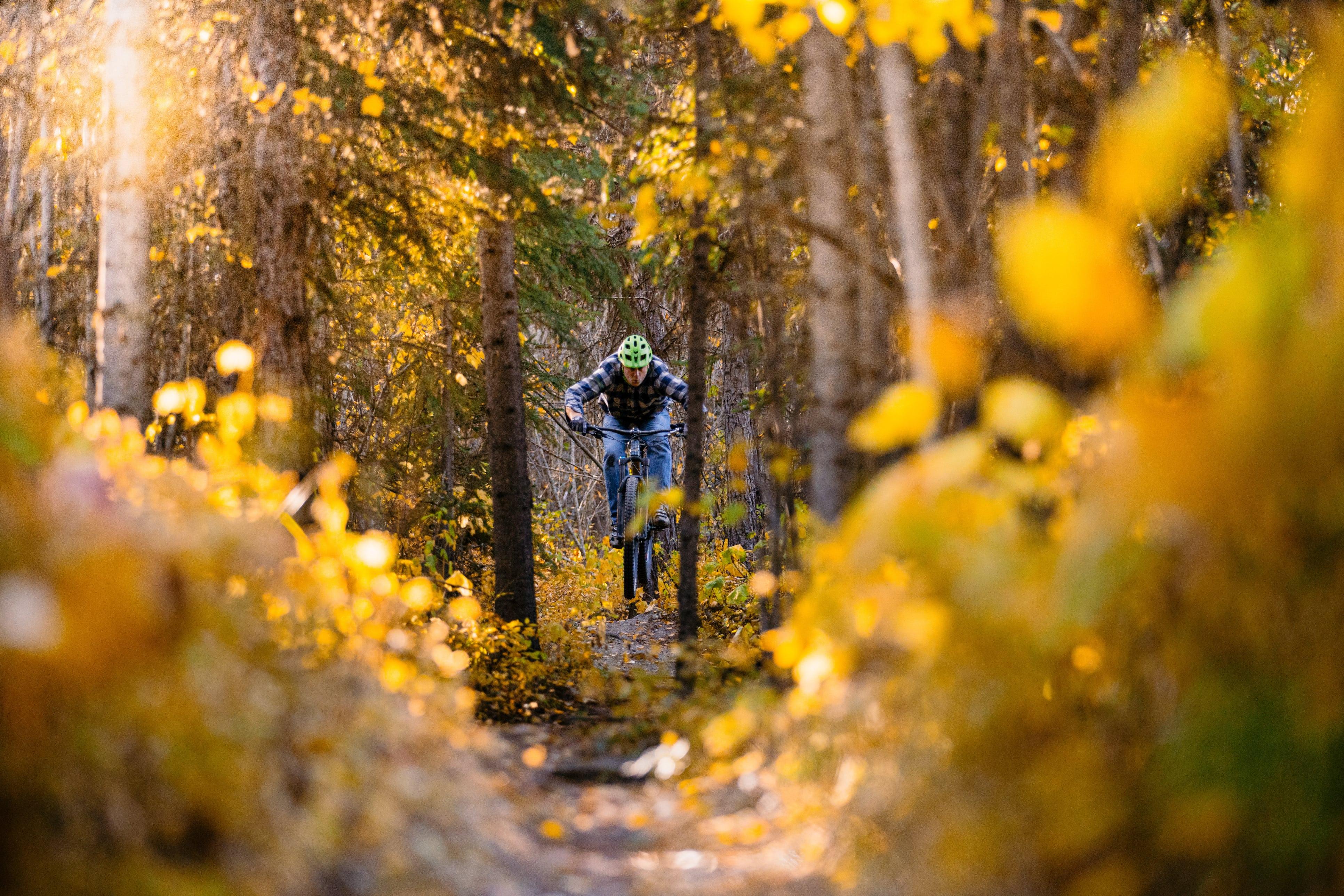 Cyclist biking through forest