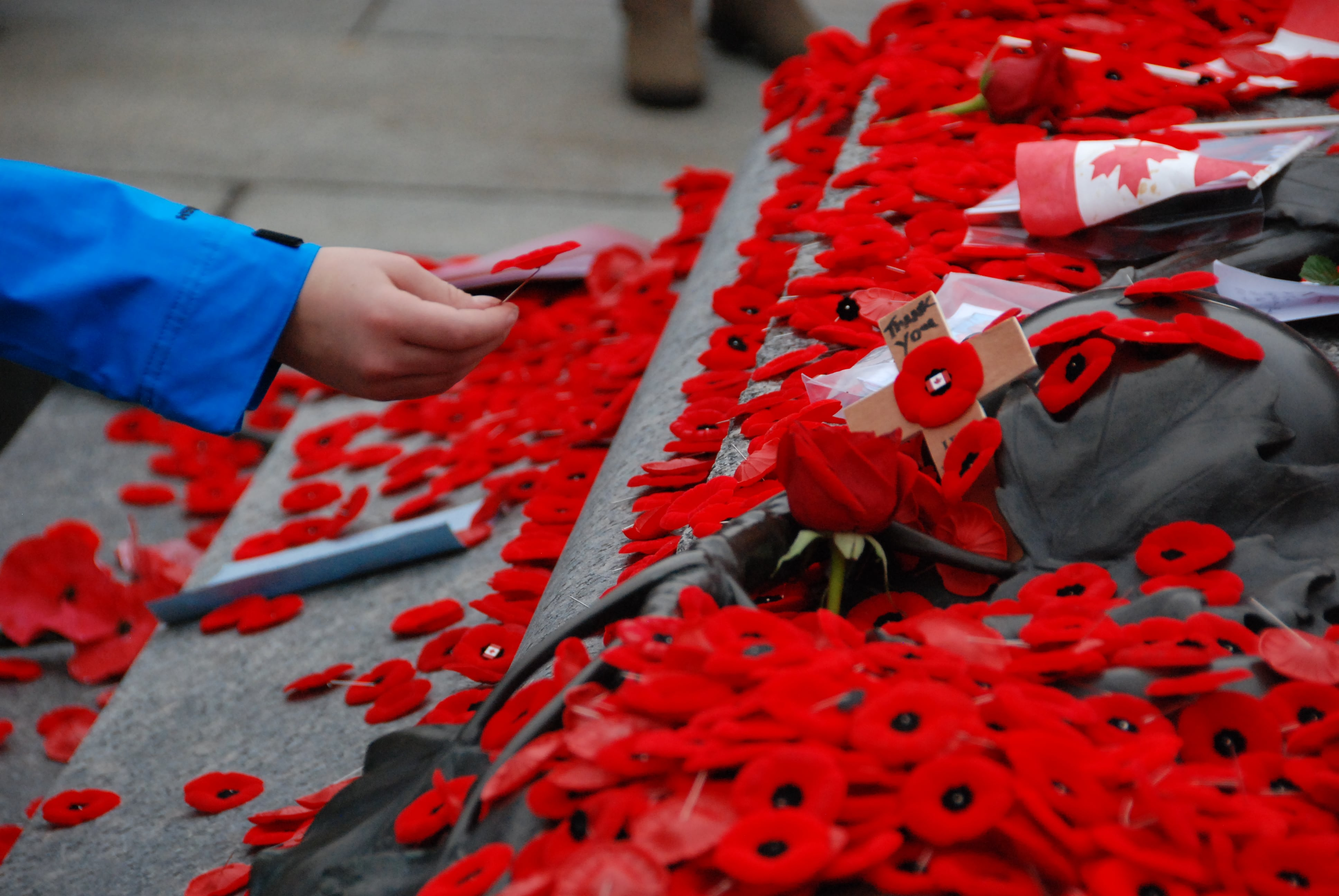 Poppies and wreaths being laid