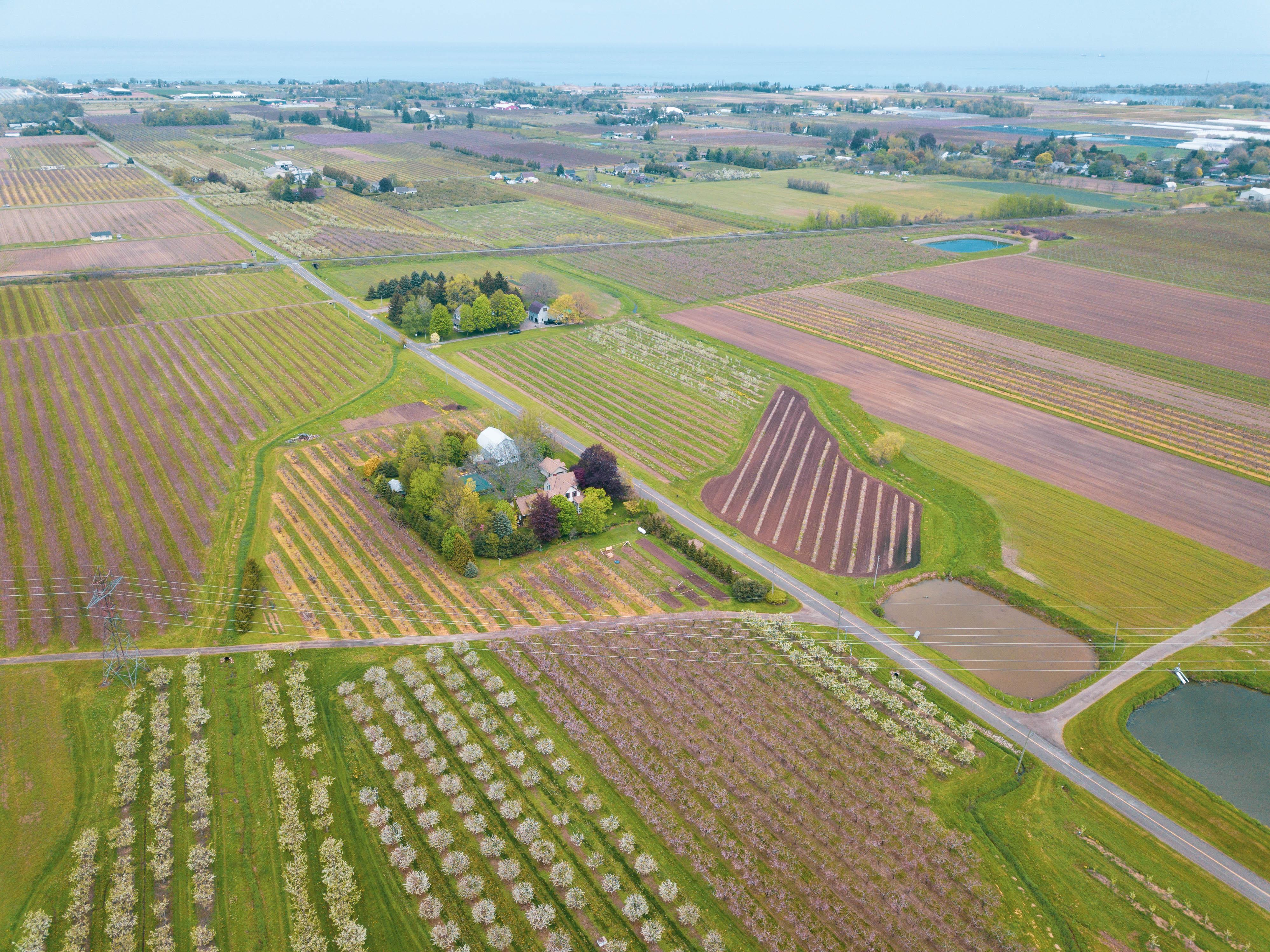 Aerial of wineries