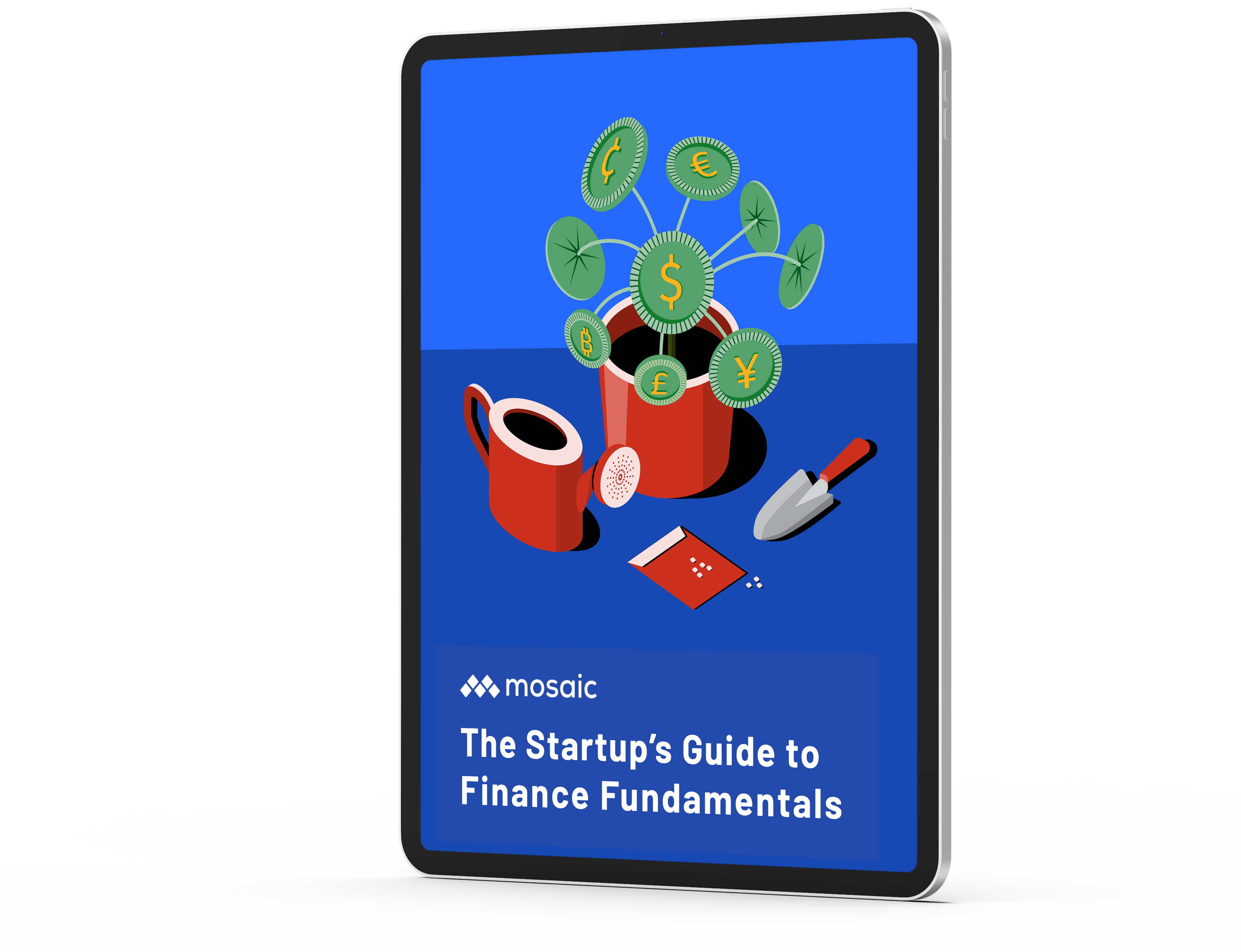 The Startup's Guide to Finance Fundamentals