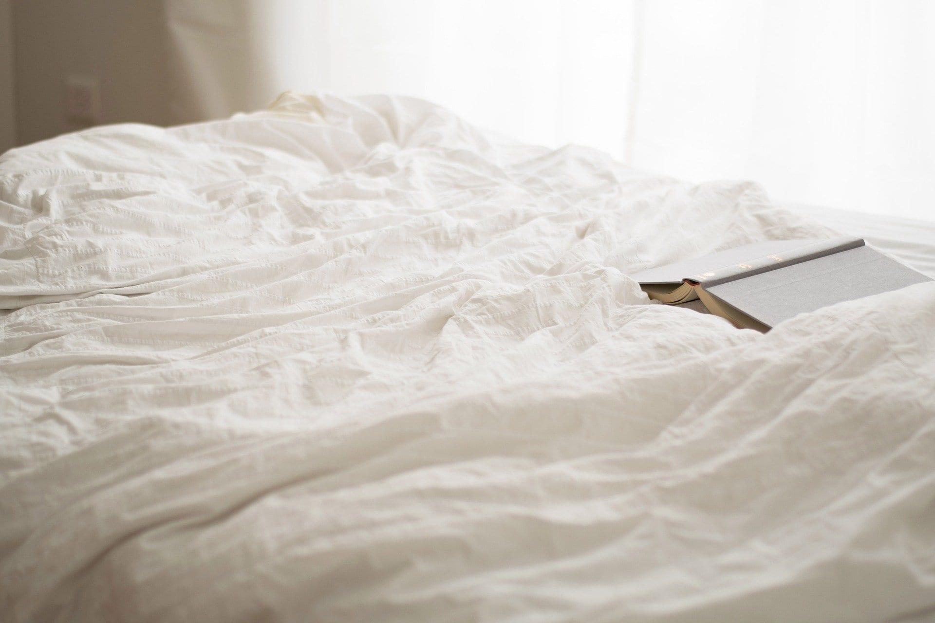 Punaises de lit : les députés à la rescousse ?