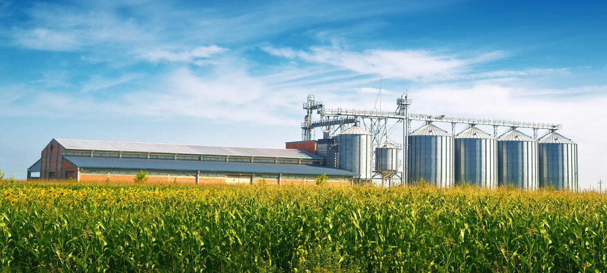 KPM Analytics - Farming