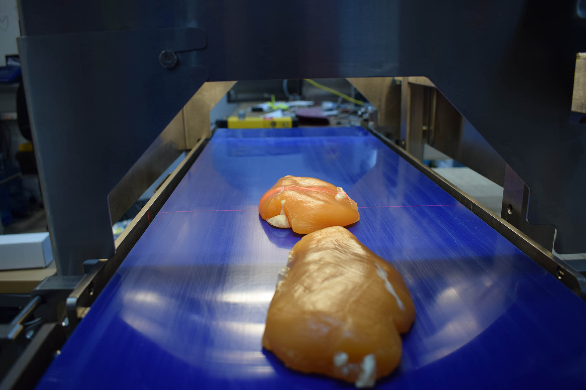 Poultry Inspection with Sightline Benchtop QA Measurement  System