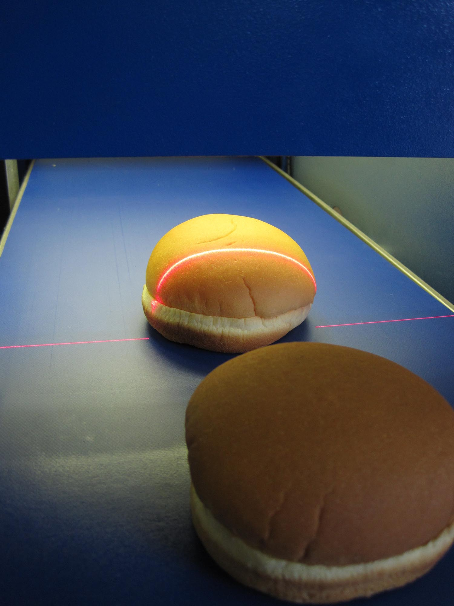 Hamburger Bun Inspection with the Sightline Benchtop QA Measurement System