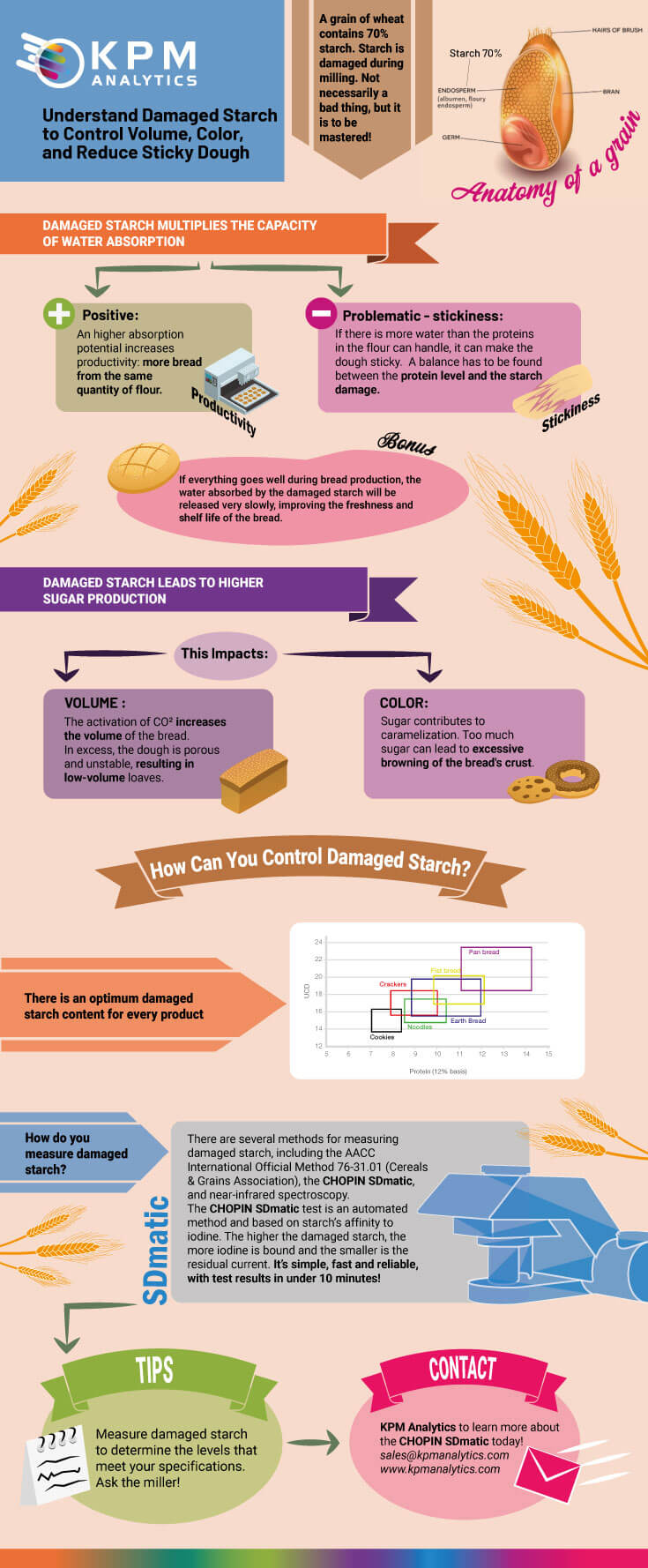 Damaged Starch infographic