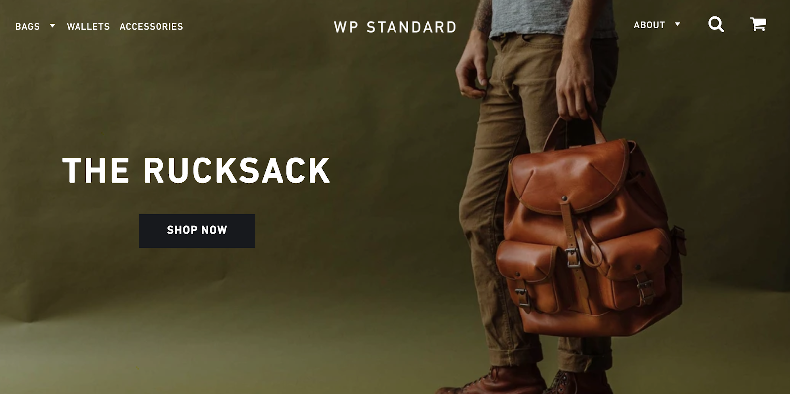 WP Standard homepage with man holding a backpack in the background