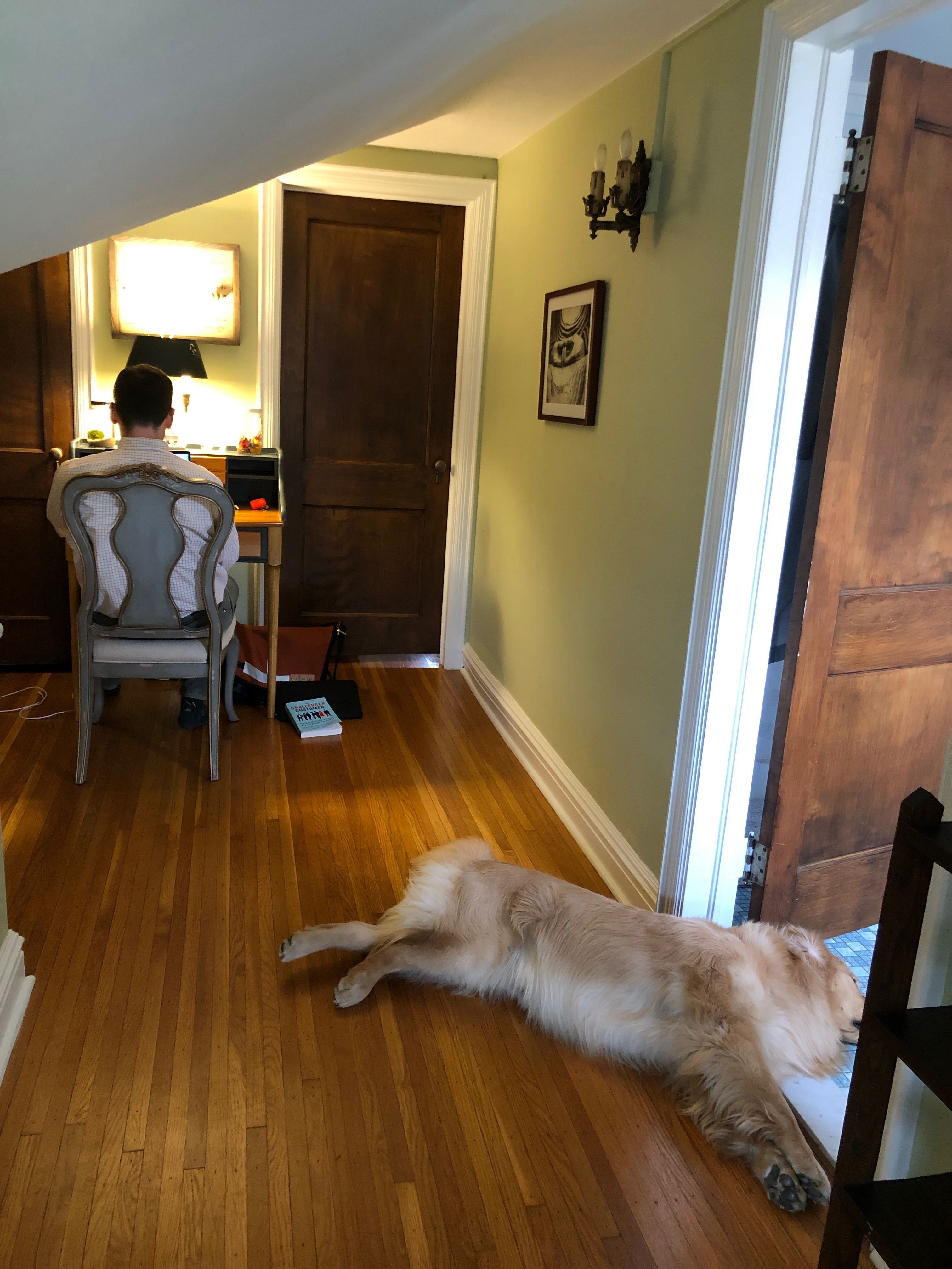home office in a hallway with a dog on the floor