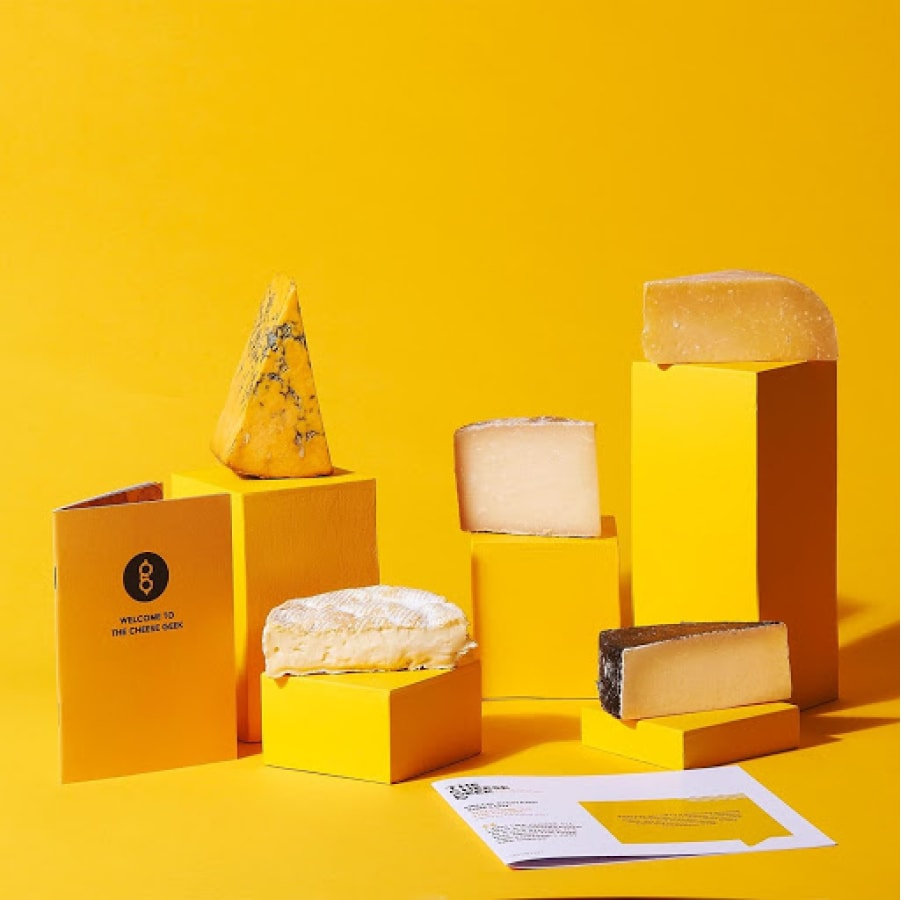 A selection of cheese from The Cheese Geek's incredible subscription website.