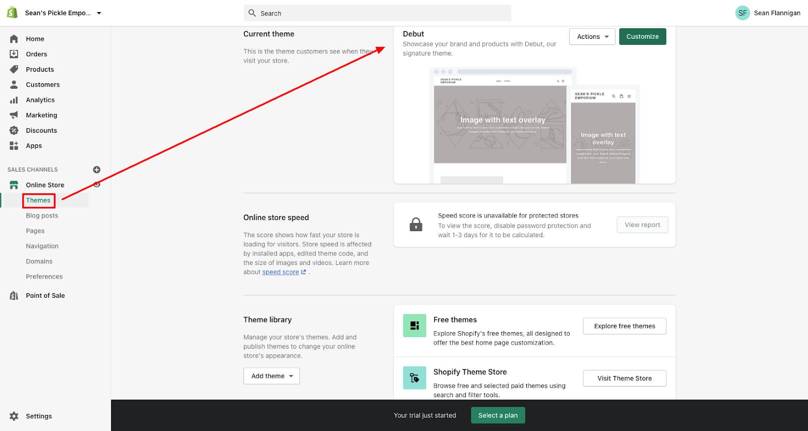shopify online store theme customization
